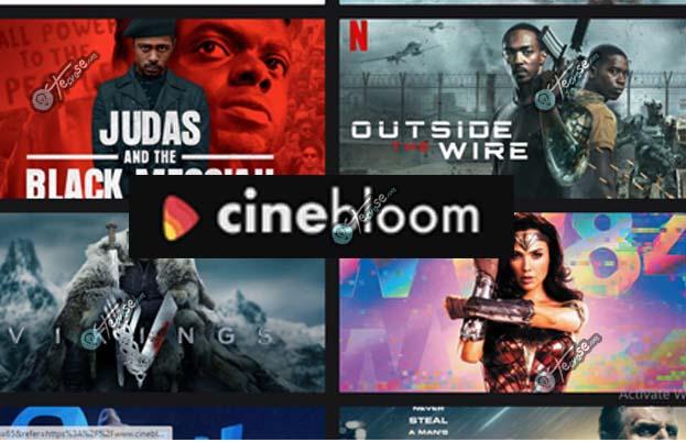 CineBloom - Watch Free CineBloom Movies Online